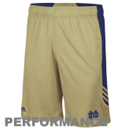 Notre Dame Fighting Irish Shorts & Pants